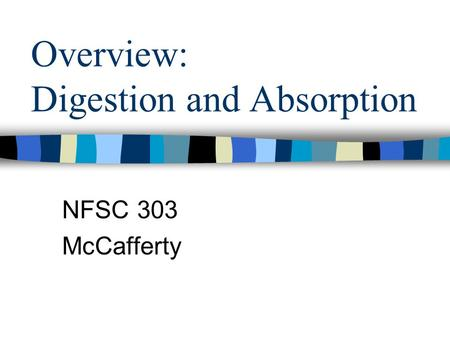 Overview: Digestion and Absorption NFSC 303 McCafferty.