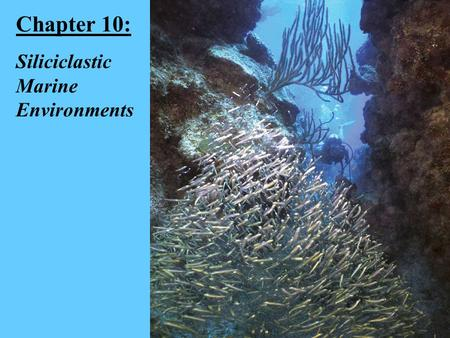 Chapter 10: Siliciclastic Marine Environments. The Shelf Environment.