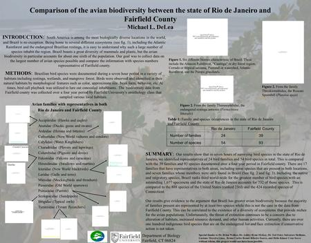 Comparison of the avian biodiversity between the state of Rio de Janeiro and Fairfield County Michael L. DeLea SUMMARY: Our results show that in seven.