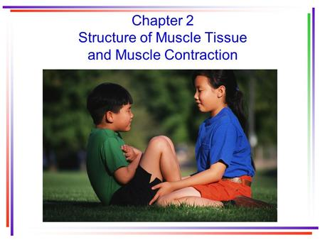 Chapter 2 Structure of Muscle Tissue and Muscle Contraction.