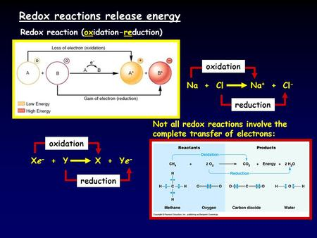 Redox reactions release energy Redox reaction (oxidation-reduction) Na + Cl Na + + Cl - oxidation reduction Xe - + Y X + Ye - oxidation reduction Not all.