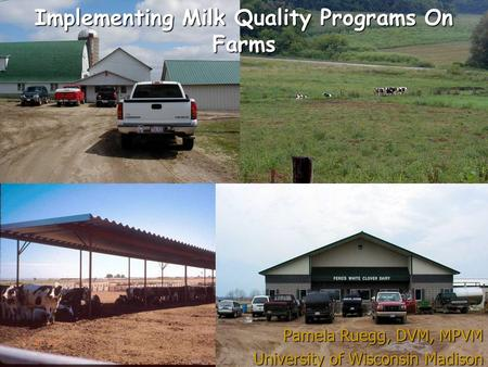Implementing Milk Quality Programs On Farms Pamela Ruegg, DVM, MPVM University of Wisconsin Madison.