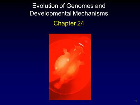 1 Evolution of Genomes and Developmental Mechanisms Chapter 24.