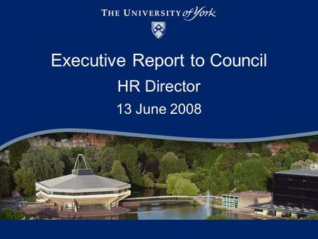 Executive Report to Council HR Director 13 June 2008.