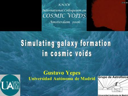 Gustavo Yepes Universidad Autónoma de Madrid KNAW International Colloquium on COSMIC VOIDS Amsterdam 2006.