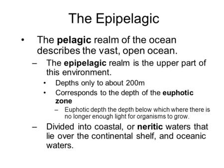 The Epipelagic The pelagic realm of the ocean describes the vast, open ocean. –The epipelagic realm is the upper part of this environment. Depths only.
