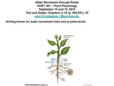 Water Movement through Plants HORT 301 – Plant Physiology September 10 and 13, 2010 Taiz and Zeiger, Chapters 4, 18 (p. 524-531), 23