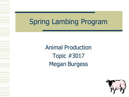 Spring Lambing Program Animal Production Topic #3017 Megan Burgess.