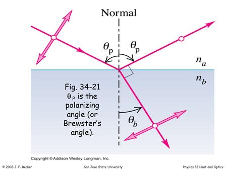 Fig. 34-21   P is the polarizing angle (or Brewster's angle). © 2003 J. F. Becker San Jose State University Physics 52 Heat and Optics.