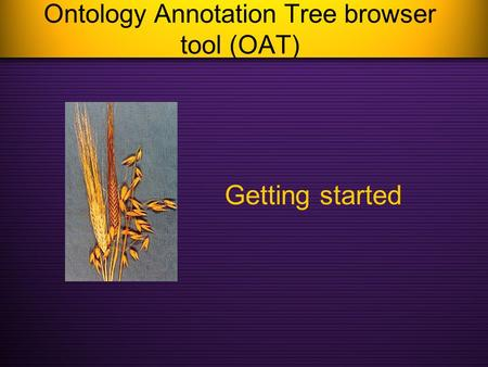 Ontology Annotation Tree browser tool (OAT) Getting started.