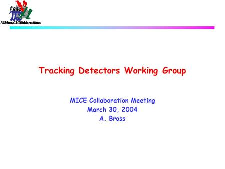 Tracking Detectors Working Group MICE Collaboration Meeting March 30, 2004 A. Bross.