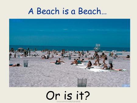 A Beach is a Beach… Or is it? www.wmich.edu/corekids.