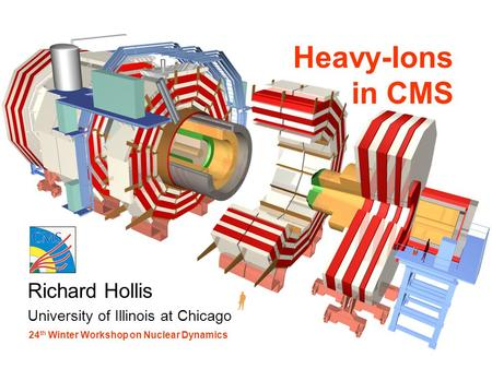Richard Hollis University of Illinois at Chicago Heavy-Ions in CMS 24 th Winter Workshop on Nuclear Dynamics.