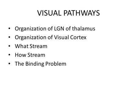 VISUAL PATHWAYS Organization of LGN of thalamus Organization of Visual Cortex What Stream How Stream The Binding Problem.