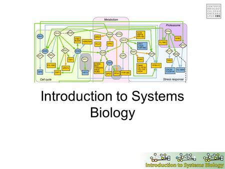 Introduction to Systems Biology. Overview of the day Background & Introduction Network analysis methods Case studies Exercises.