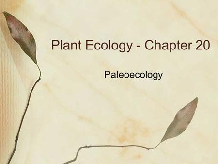 Plant Ecology - Chapter 20 Paleoecology. The study of historical ecology Changes in global patterns of vegetation, diversity Driven by ecological, evolutionary.