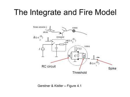 The Integrate and Fire Model Gerstner & Kistler – Figure 4.1 RC circuit Threshold Spike.