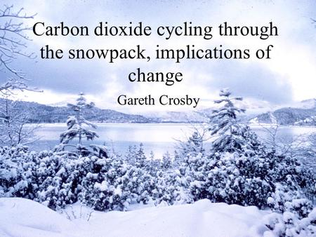 Carbon dioxide cycling through the snowpack, implications of change Gareth Crosby.