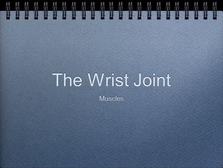 The Wrist Joint Muscles. Elbow flexors - anterior Elbow extensors - posterior Forearm pronators Forearm supinators.