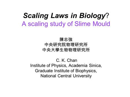 Scaling Laws in Biology? A scaling study of Slime Mould 陳志強 中央研究院物理研究所 中央大學生物物理研究所 C. K. Chan Institute of Physics, Academia Sinica, Graduate Institute.