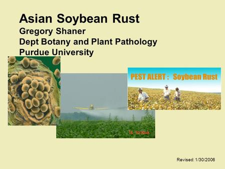 Asian Soybean Rust Gregory Shaner Dept Botany and Plant Pathology Purdue University Revised: 1/30/2006.