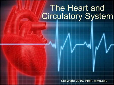 The Heart and Circulatory System Copyright 2010. PEER.tamu.edu.