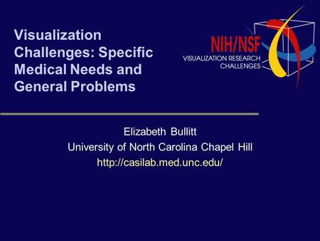 Visualization Challenges: Specific Medical Needs and General Problems Elizabeth Bullitt University of North Carolina Chapel Hill