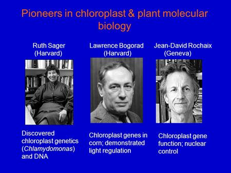 Pioneers in chloroplast & plant molecular biology Discovered chloroplast genetics (Chlamydomonas) and DNA Chloroplast genes in corn; demonstrated light.