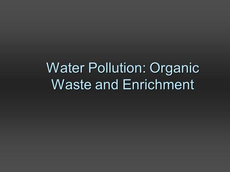 Water Pollution: Organic Waste and Enrichment. Headwater stream, Rocky Mountains National Park, CO R.Grippo.