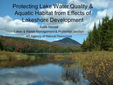 Protecting Lake Water Quality & Aquatic Habitat from Effects of Lakeshore Development Kellie Merrell Lakes & Ponds Management & Protection Section VT Agency.
