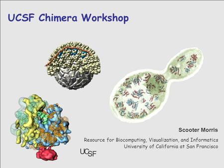 3/18/2005 UCSF Chimera Workshop Resource for Biocomputing, Visualization, and Informatics University of California at San Francisco Scooter Morris U C.