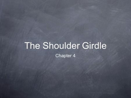 The Shoulder Girdle Chapter 4. Bones 1. Clavicle 2. Scapula 3. Sternum*