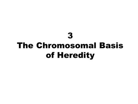 3 The Chromosomal Basis of Heredity. 2 3 Chromosome Structure Eukaryotic chromosome contains a single DNA molecule of enormous length in a highly coiled.