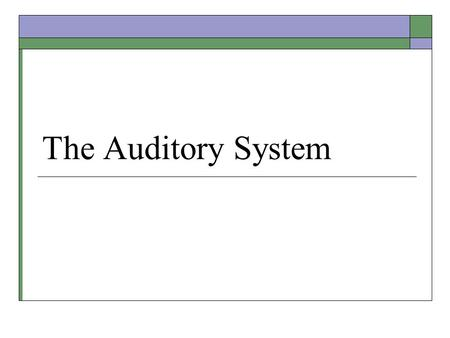 The Auditory System. Audition (Hearing)  Transduction of physical sound waves into brain activity via the ear. Sound is perceptual and subjective. 