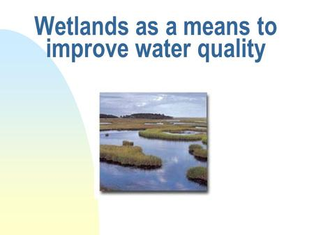 Wetlands as a means to improve water quality. Mechanisms of improving water quality n trap sediment n sequester pollutants n remove phosphorous n remove/modify.