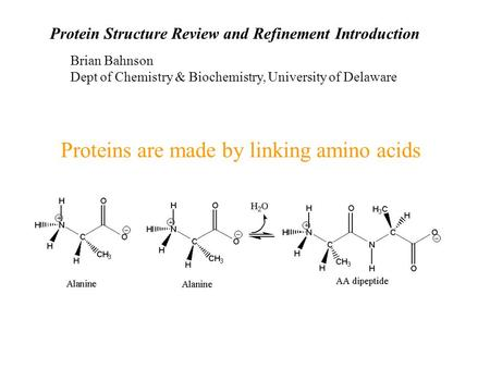 Proteins are made by linking amino acids Protein Structure Review and Refinement Introduction Brian Bahnson Dept of Chemistry & Biochemistry, University.