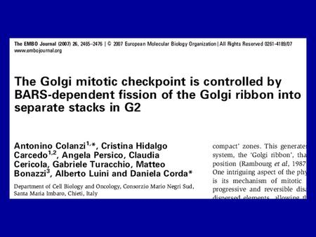 The major questions… Further refine the timing of Golgi fission in G2 Elucidate the role of BARS in Golgi fission Elucidate the Golgi mitotic checkpoint.