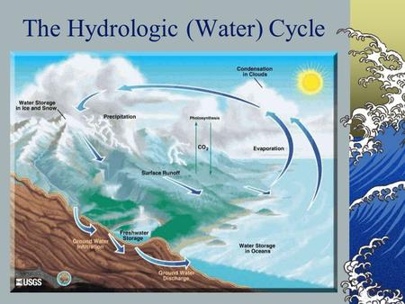 The Hydrologic (Water) Cycle. Surface Water Oceans Rivers and streams Lakes and ponds Springs – groundwater becomes surface water.