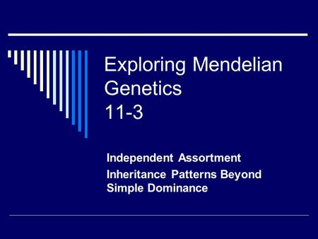 Exploring Mendelian Genetics 11-3 Independent Assortment Inheritance Patterns Beyond Simple Dominance.