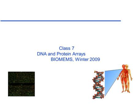 Class 7 DNA and Protein Arrays BIOMEMS, Winter 2009.