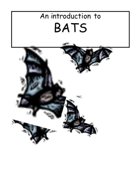 An introduction to BATS.