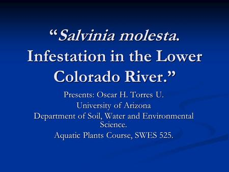"""Salvinia molesta. Infestation in the Lower Colorado River."" Presents: Oscar H. Torres U. University of Arizona Department of Soil, Water and Environmental."