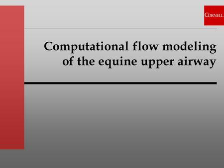 Computational flow modeling of the equine upper airway