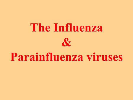The Influenza & Parainfluenza viruses