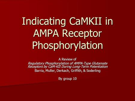 Indicating CaMKII in AMPA Receptor Phosphorylation A Review of Regulatory Phosphorylation of AMPA-Type Glutamate Receptors by CaM-KII During Long-Term.