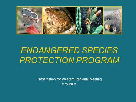 ENDANGERED SPECIES PROTECTION PROGRAM Presentation for Western Regional Meeting May 2004.