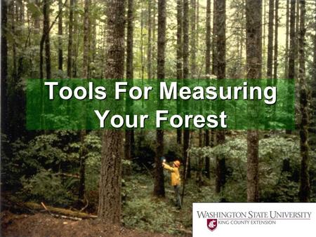 Tools For Measuring Your Forest.