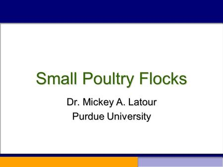 Small Poultry Flocks Dr. Mickey A. Latour Purdue University.