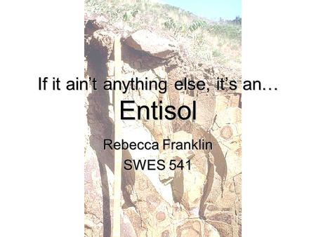 If it ain't anything else, it's an… Entisol Rebecca Franklin SWES 541.