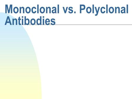 Monoclonal vs. Polyclonal Antibodies. Review - B cell maturation n Antigen independent maturation of B cells u A light chain and a heavy chain IgG gene.